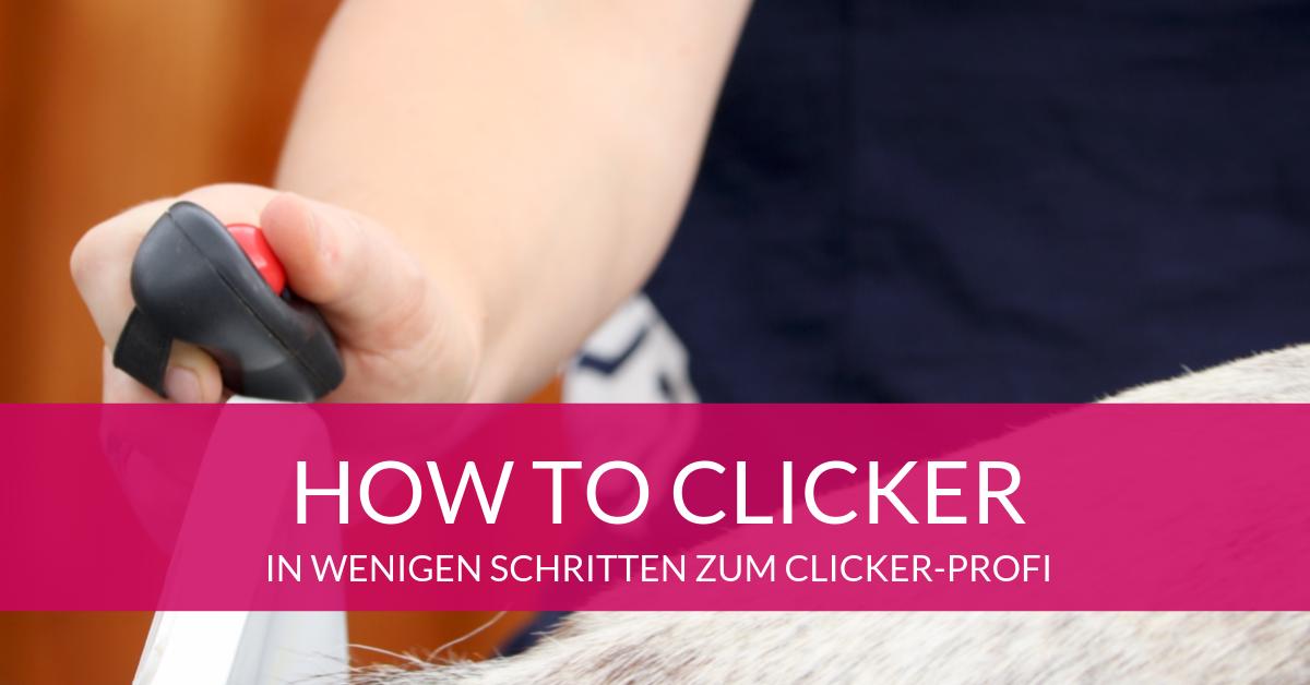 How to Clicker! Schauen und verlieben